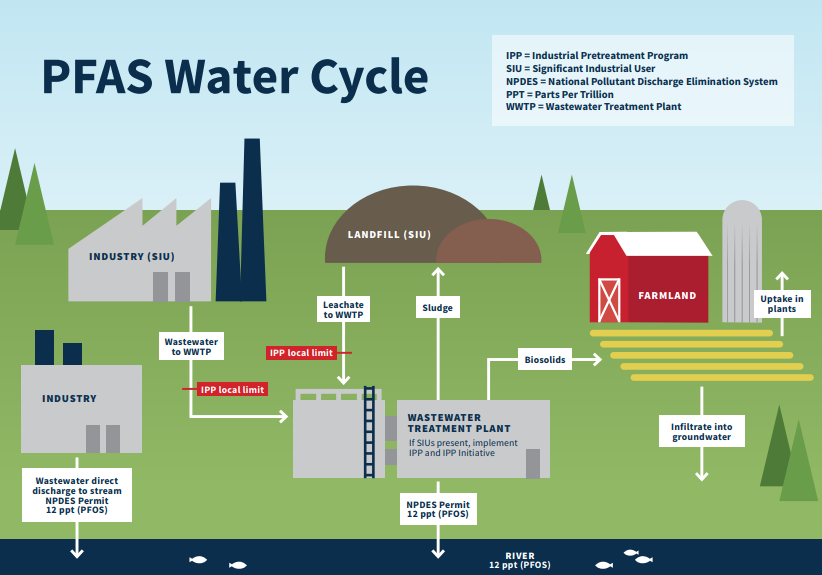PFAS_Water_Cycle_631266_7 pdf